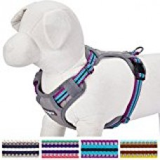 Blueberry Pet 4 Colors Soft & Comfy 3M Reflective Multi-colored Stripe Padded Dog Harness Vest, Chest Girth 26