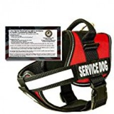 barkOutfitters Service Dog Vest Harness + 50 ADA Info Cards Kit (Red, (30