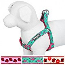 Blueberry Pet Step-in Pink Flamingo on Light Emerald Dog Harness, Chest Girth 15.5