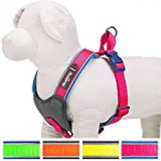 Blueberry Pet 4 Colors Soft & Comfy Summer Hope 3M Reflective Padded Dog Harness Vest, Chest Girth 20.5